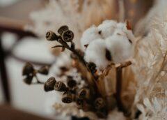 Droogbloemen zijn razend populair nu